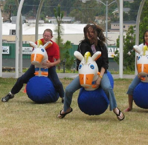 Inflatable Pony Hops Rental In Tampa